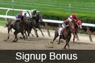 Horse racing loyalty program